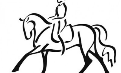 Looking for a young dressage horse